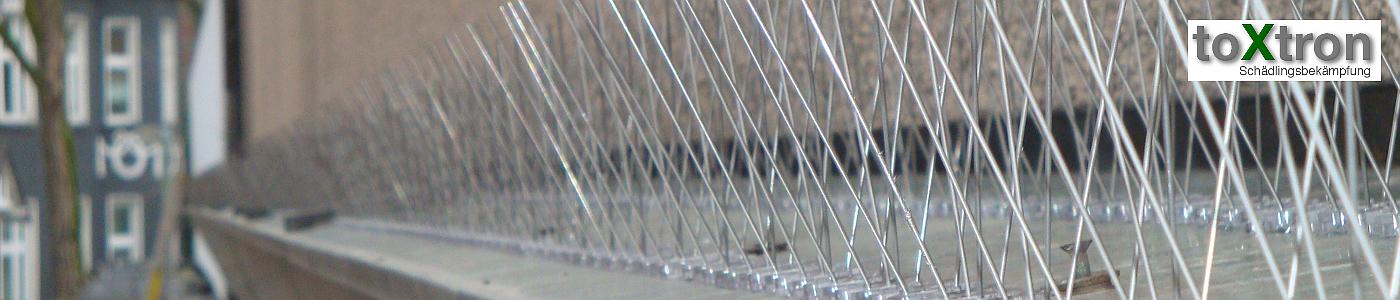 taubenspikes-anbringen-fassaden-toxtron